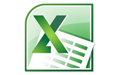 MS: Excel 2010
